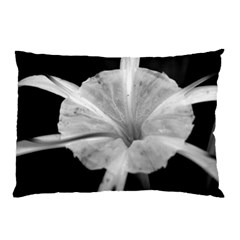 Exotic Black and White Flower 2 Pillow Cases (Two Sides)