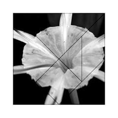 Exotic Black And White Flower 2 Acrylic Tangram Puzzle (6  X 6 )