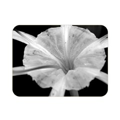 Exotic Black and White Flower 2 Double Sided Flano Blanket (Mini)
