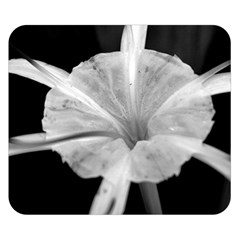 Exotic Black and White Flower 2 Double Sided Flano Blanket (Small)