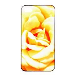 Orange Yellow Rose Apple iPhone 4/4s Seamless Case (Black)