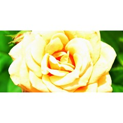 Orange Yellow Rose You Are Invited 3d Greeting Card (8x4)
