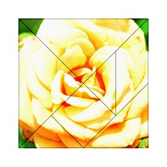 Orange Yellow Rose Acrylic Tangram Puzzle (6  X 6 )