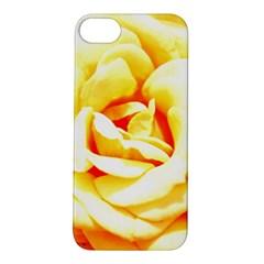 Orange Yellow Rose Apple Iphone 5s Hardshell Case