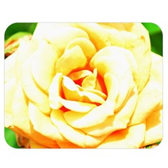 Orange Yellow Rose Double Sided Flano Blanket (Medium)