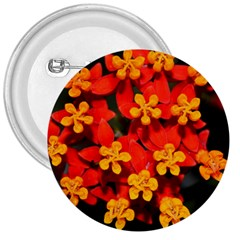 Orange And Red Weed 3  Buttons