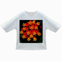Orange And Red Weed Infant/toddler T Shirts