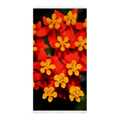 Orange And Red Weed Shower Curtain 36  X 72  (stall)