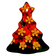 Orange and Red Weed Christmas Tree Ornament (2 Sides)