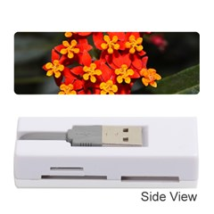 Orange and Red Weed Memory Card Reader (Stick)