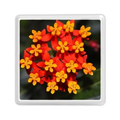 Orange and Red Weed Memory Card Reader (Square)