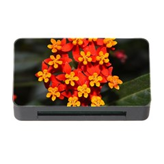 Orange and Red Weed Memory Card Reader with CF