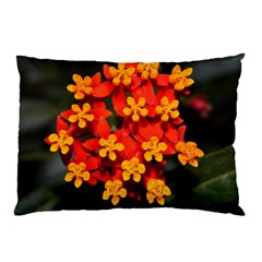 Orange and Red Weed Pillow Cases (Two Sides)