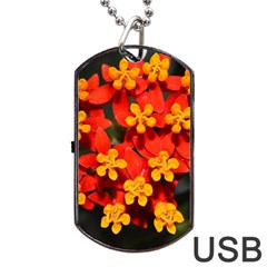 Orange and Red Weed Dog Tag USB Flash (One Side)