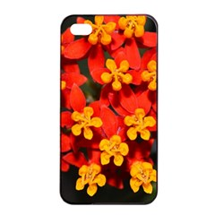 Orange And Red Weed Apple Iphone 4/4s Seamless Case (black)