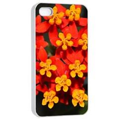 Orange and Red Weed Apple iPhone 4/4s Seamless Case (White)
