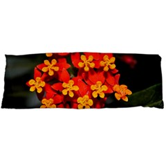 Orange and Red Weed Body Pillow Cases Dakimakura (Two Sides)