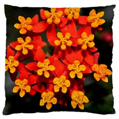 Orange And Red Weed Large Cushion Cases (two Sides)