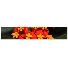 Orange And Red Weed Flano Scarf (large)