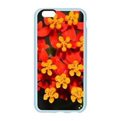 Orange and Red Weed Apple Seamless iPhone 6 Case (Color)