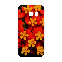 Orange and Red Weed Galaxy S6 Edge