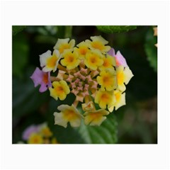 Colorful Flowers Small Glasses Cloth