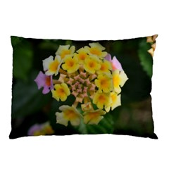 Colorful Flowers Pillow Cases