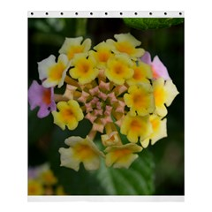 Colorful Flowers Shower Curtain 60  X 72  (medium)