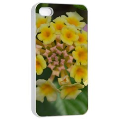 Colorful Flowers Apple iPhone 4/4s Seamless Case (White)