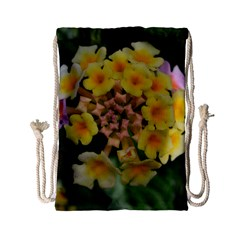 Colorful Flowers Drawstring Bag (Small)