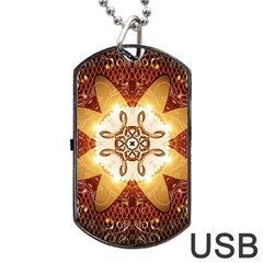 Elegant, Decorative Kaleidoskop In Gold And Red Dog Tag USB Flash (One Side)