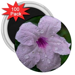 Pink Purple Flowers 3  Magnets (100 Pack)