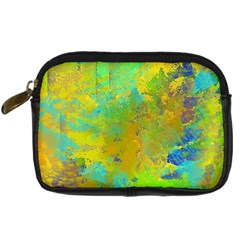 Abstract in Blue, Green, Copper, and Gold Digital Camera Cases