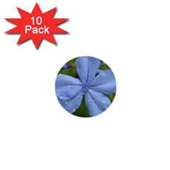 Blue Water Droplets 1  Mini Buttons (10 Pack)