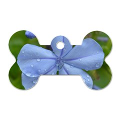 Blue Water Droplets Dog Tag Bone (one Side)