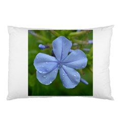 Blue Water Droplets Pillow Cases (Two Sides)