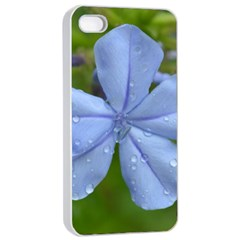 Blue Water Droplets Apple iPhone 4/4s Seamless Case (White)