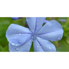 Blue Water Droplets YOU ARE INVITED 3D Greeting Card (8x4)