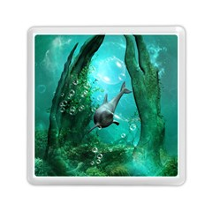 Wonderful Dolphin Memory Card Reader (Square)