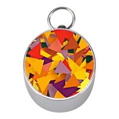 Geo Fun 8 Colorful Mini Silver Compasses