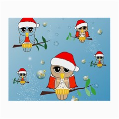 Funny, Cute Christmas Owls With Snowflakes Small Glasses Cloth