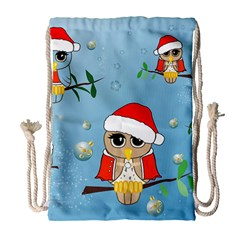 Funny, Cute Christmas Owls With Snowflakes Drawstring Bag (Large)