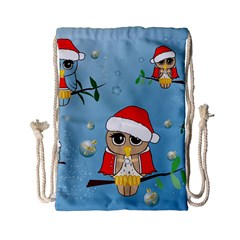 Funny, Cute Christmas Owls With Snowflakes Drawstring Bag (Small)