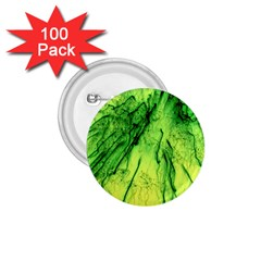 Special Fireworks, Green 1.75  Buttons (100 pack)