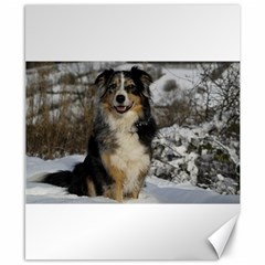 Australian Shepherd In Snow 2 Canvas 8  x 10