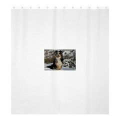 Australian Shepherd In Snow 2 Shower Curtain 66  x 72  (Large)