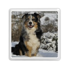 Australian Shepherd In Snow 2 Memory Card Reader (Square)
