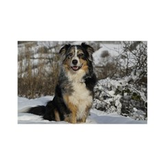 Australian Shepherd In Snow 2 YOU ARE INVITED 3D Greeting Card (8x4)