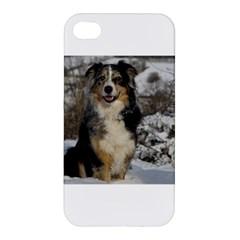 Australian Shepherd In Snow 2 Apple iPhone 4/4S Hardshell Case