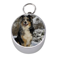 Australian Shepherd In Snow 2 Mini Silver Compasses